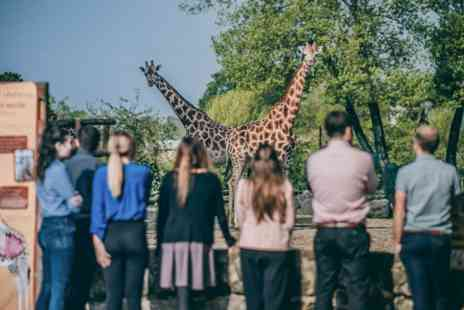 Virgin Experience Days - VIP After Hours Experience at Chester Zoo with Exclusive Tour and Gourmet Four Course Dining - Save 0%
