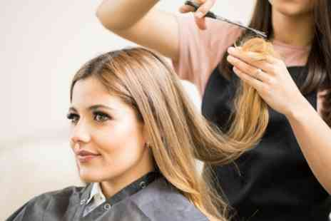 Alexa Hair and Beauty - Cut and Finish with Optional Full Head Colour or Half Head Highlights - Save 50%