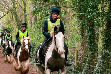 Coloured Cob - Pony trekking 45 minutes PT45 - Save 0%