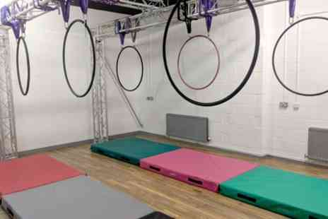 Cloud Aerial Arts - One or Five Pole Dance, Trapeze or Aerial Hoop Sessions for One or Two - Save 30%