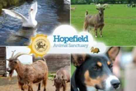 Hopefield Animal Sanctuary - Family Entry With Tea and Coffee Plus Magnet or Key Ring - Save 40%