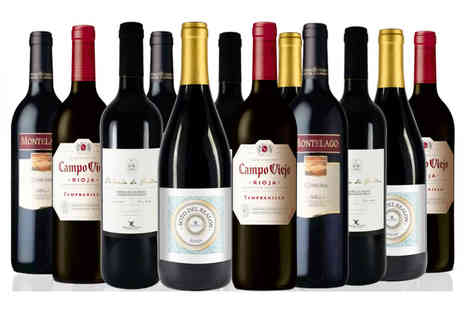 San Jamon - Case of 12 bottles of Spanish Red Wine - Save 57%