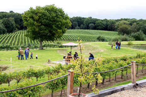 Bluebell Vineyard Estates - Wine tasting and tour for two - Save 53%