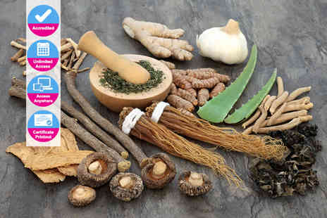 New Skills Academy - An accredited Chinese medicine course - Save 0%