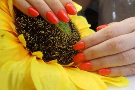 Touch of elegance - Russian Manicure, Pedicure or Both with Gel Polish or Overlay - Save 40%