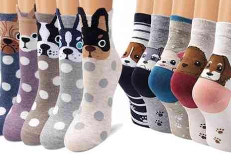 Groupon Goods Global GmbH - Five or Ten Pairs of Womens Dog Socks - Save 65%