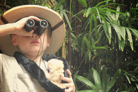 Plantasia Swansea - Family ticket to an immersive tropical rainforest experience - Save 43%