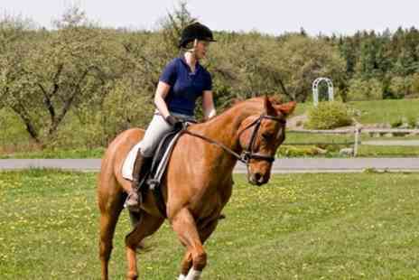 SevernwyeEquestrian - One or Two Hour Horse Riding Lesson or Trek for One or Two - Save 22%