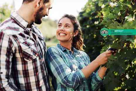 Carr Taylor Vineyard - Vineyard tour, wine tasting and buffet lunch for two people - Save 70%