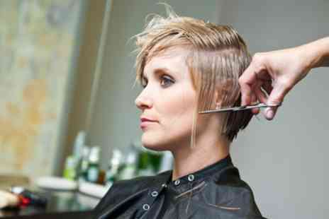 Tanyas Creative Hair Design - Wash, Cut, Blow Dry with Optional Half- or Full Head Highlights - Save 51%
