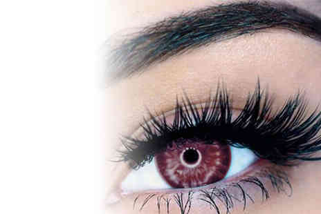 Forever Cosmetics - Eight magnetic eyelash extensions - Save 65%