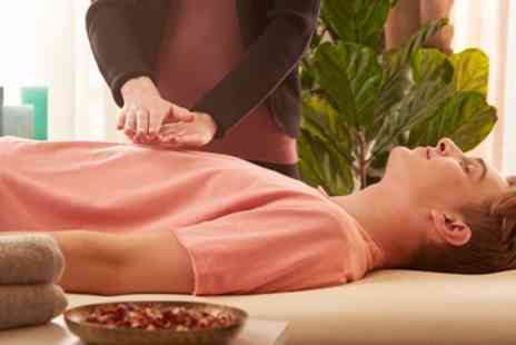 Insightability - 60 Minute Reiki Treatment Sessions - Save 53%