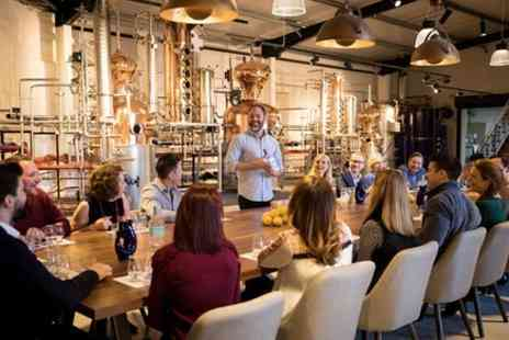 Haymans Distillery - Guided Distillery Tour and Tutored Gin Tasting - Save 0%