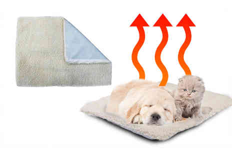 Avant Garde - Large magic pet thermal fleece heating bed - Save 74%