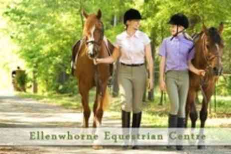 Ellenwhorne Equestrian Centre - Six Hour Horse Riding Experience With Lesson or Hack And Buffet Lunch - Save 59%