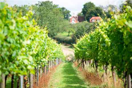 Chapel Down Winery - Vineyard Tour with Cheese and Wine Tasting and Fizz for Two - Save 0%