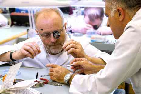 The British Horological Institute - Build Your Own Watch and Learn the History of Watchmaking with Overnight Stay - Save 0%