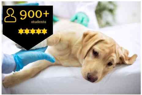 OfCourse - Online canine first aid and cpr course - Save 90%