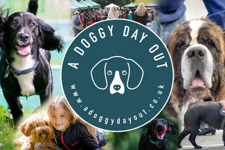 A Doggy Day Out - Entry for two adults and two dogs to The Big Bark including unlimited activities and activity card on 10th May 2020, £10 to include a doggy party bag - Save 47%