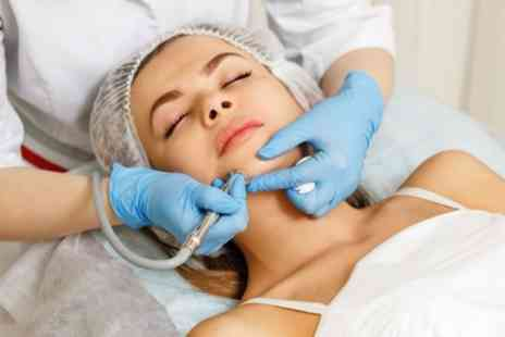 The British Aesthetic Bar - Six Step Hydra Facial - Save 56%