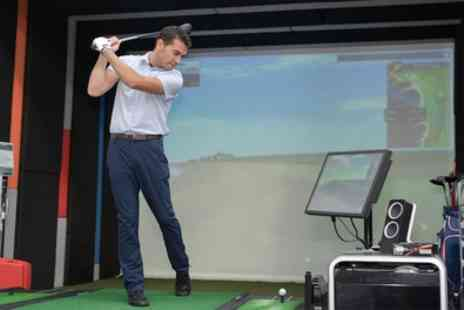 Steve Priest PGA Professional - One Hour Golf Video Analysis with E Mail for One or Two - Save 80%