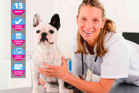 International Open Academy - Online accredited veterinary support assistant course - Save 0%