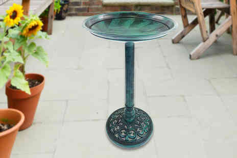 Who Needs Shops - Ornamental bird bath - Save 74%