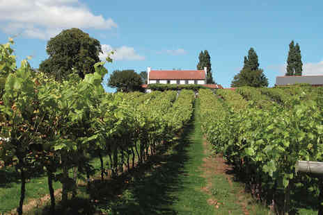 Three Choirs Vineyards - One night stay with tour and wine tasting - Save 28%