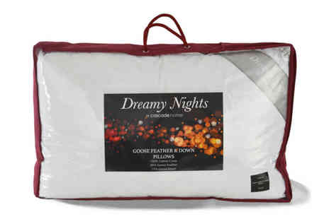 Cascade Home - Two goose feather and down pillows - Save 78%