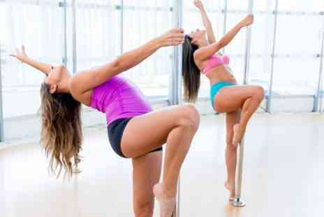 Oxford Aerial Arts - Four Pole Dance or Aerial Hoop Classes for One or Two - Save 40%