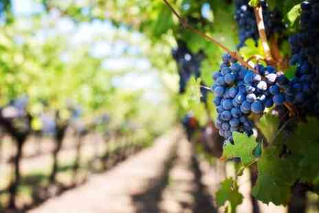 Kent Wine Tours - Luxury All Day Wine Tour including Lunch - Save 0%