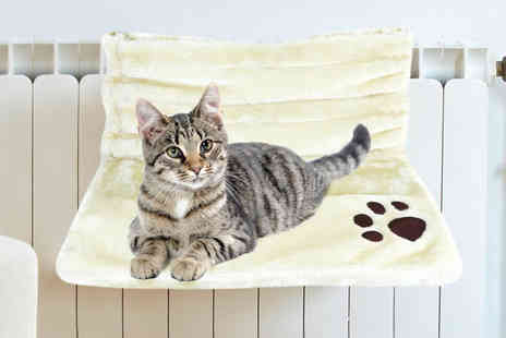 Online Shoppe - Cat fleece radiator bed choose your colour - Save 69%