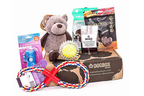 Dog Box Boutique - 6 Item Gift Box - Save 40%