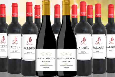 San Jamon - Case of 12 Spanish red wines - Save 47%