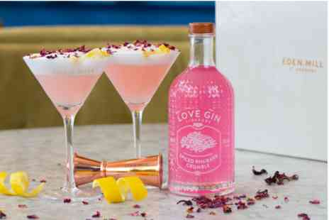 Virgin Experience Days - Eden Mill Spiced Rhubarb Crumble Gin Liqueur with Martini Glasses - Save 0%
