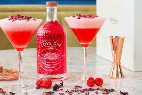 Virgin Experience Days - Eden Mill Raspberry, Vanilla and Meringue Gin Liqueur with Martini Glasses - Save 0%