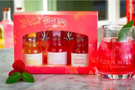 Virgin Experience Days - Eden Mill Love Gin Liqueurs Tasting Set with Tulip Gin Glass - Save 0%