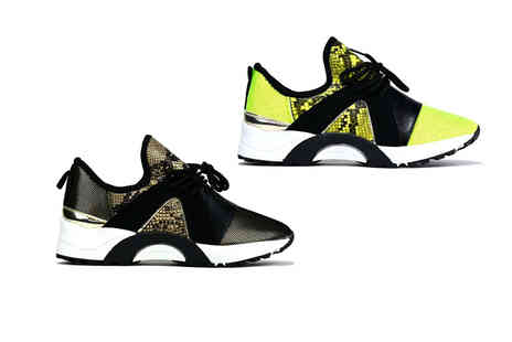 Shoe Fest - Pair of ladies Amari snake print trainers choose from UK shoe sizes 3 To 8 - Save 0%