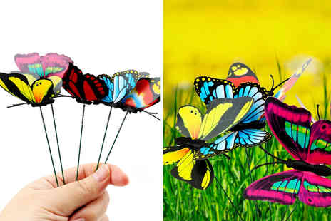 Domo Secret - Pack of 25 butterfly stake decorations - Save 55%