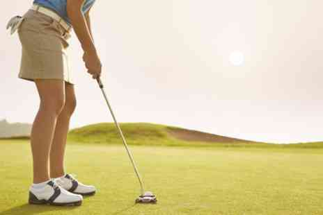Will Lambert Golf - 30 or 60 Minute Golf Lesson for One or Two - Save 50%