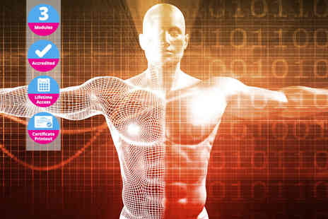 Online Beauty Training - Online anatomy and physiology diploma - Save 0%