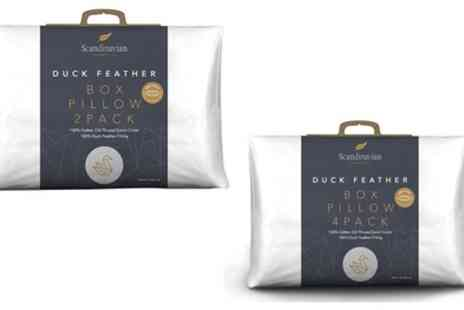Groupon Goods Global GmbH - 230TC 1000g Duck Feather Pillows or Scented Pillow Covers - Save 0%