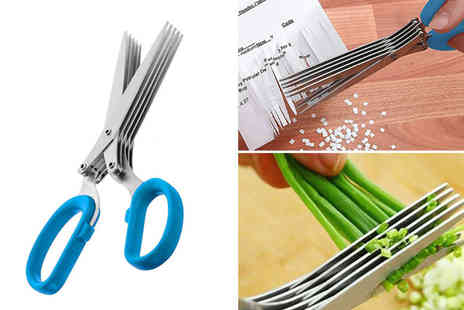 London Exchain Store - Stainless steel herb scissors - Save 75%