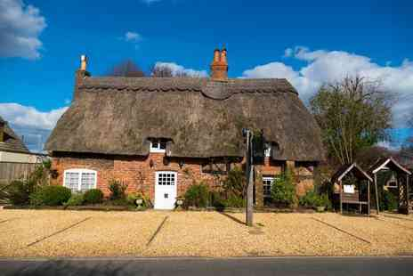 Thatched Cottage Hotel - A New Forest stay with gin tasting experience and breakfast - Save 33%