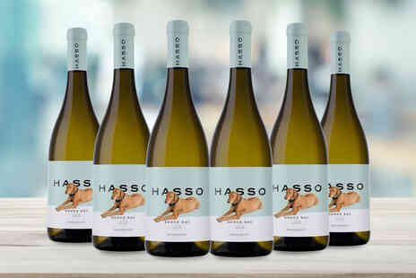 GPWines - Six bottles of Hasso 2018 red or white wine, or choose to get three bottles of each - Save 0%
