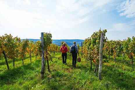 Yorkshire Heart Vineyard & Brewery - Guided tour of the vineyard including wine tasting, nibbles - Save 47%
