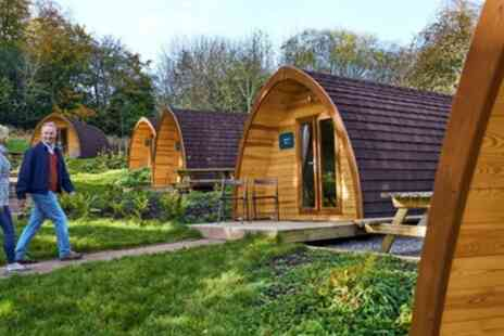 Whitemead Forest Park - Glamping Megapod with WC for Up to Four People - Save 0%