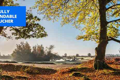 Woodlands Lodge Hotel - New Forest hunting lodge getaway with meals - Save 45%