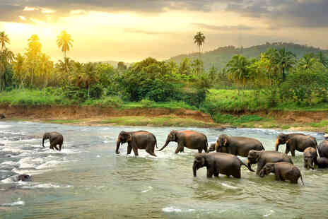 Weekender Breaks - A Sri Lanka hotel stay with return flights from four airports - Save 36%