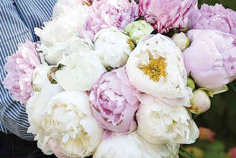 Thompson & Morgan - Set of three Peony scented bouquet plant mix - Save 30%